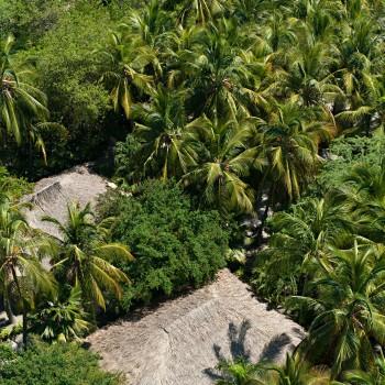 Naturaleza por todos lados en el Hotel Irotama Resort, Santa Marta (Colombia) www.irotama.com. Fotógrafo Mario Carvajal (www.mariocarvajal.com) - Astrolabio, fotografía de hoteles (www.astrolabio.com.co)